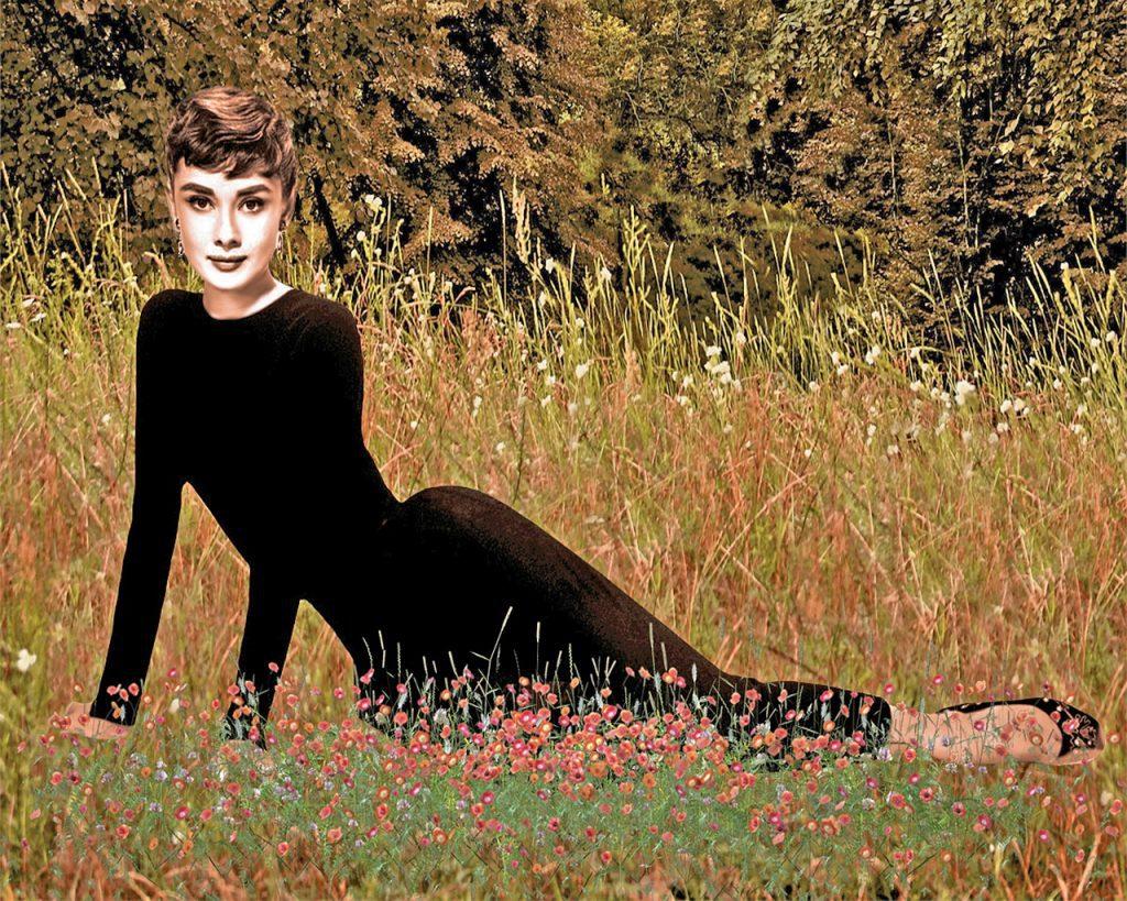 field, woman, audrey hepburn